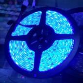 Common Cathode LED Lights 5050 RGB LED RIbbon Tape Strip